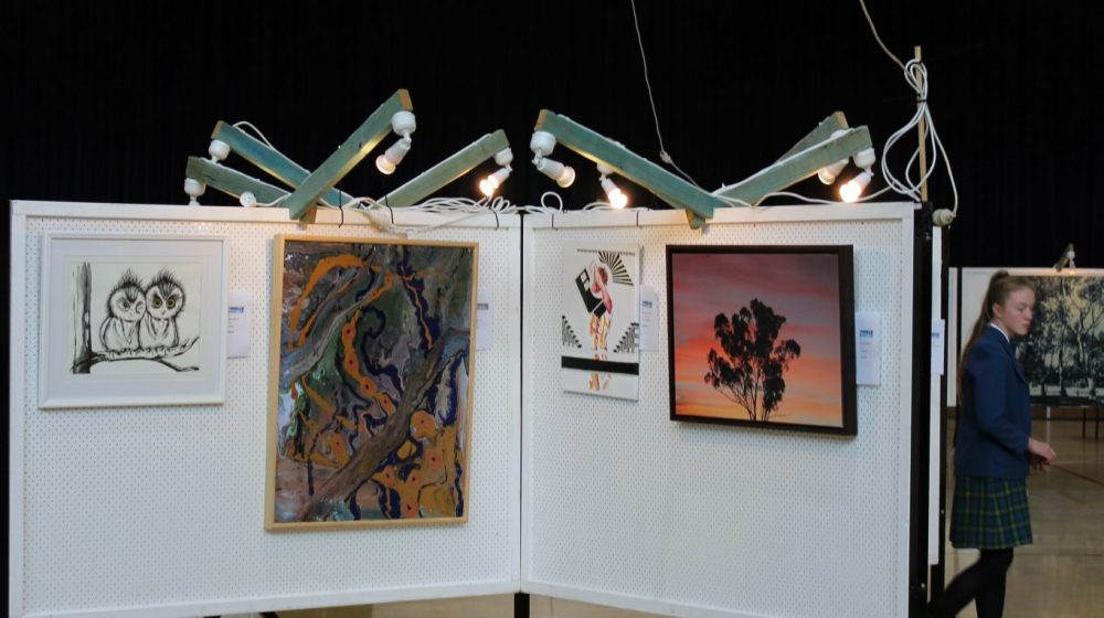 Paintings hanging in art show